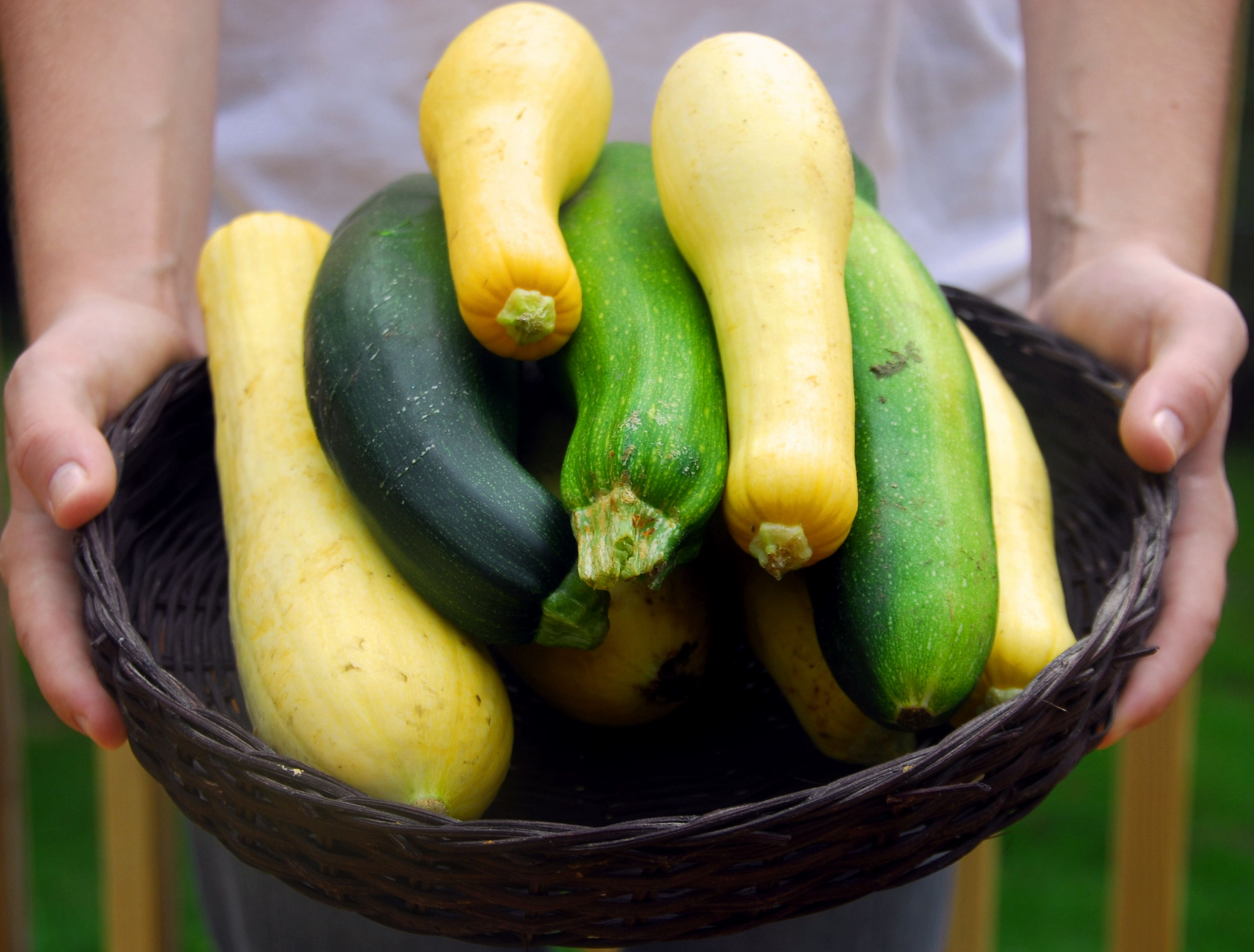 There's Only One Right Way to Cook Summer Squash