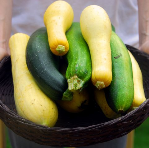 Summer squash, Natural foods, Food, Local food, Vegetable, Zucchini, Plant, Spreewald gherkins, Cucumber, Produce,