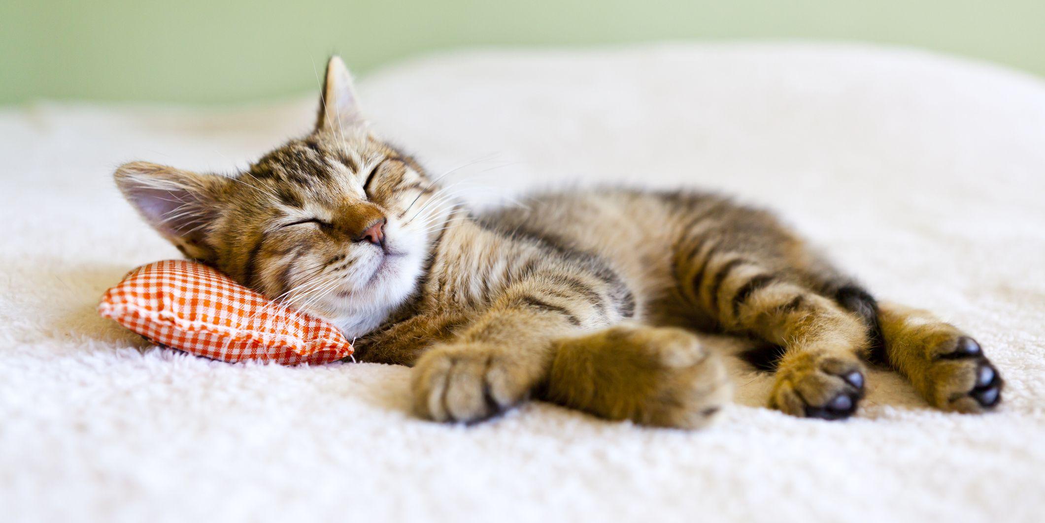 10 dingen die je in huis onbewust moe maken