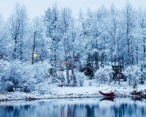 Snow, Winter, Tree, Nature, Natural landscape, Sky, Water, Freezing, Natural environment, Atmospheric phenomenon,