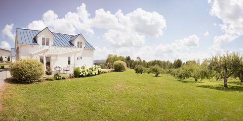 Property, Natural landscape, Land lot, House, Home, Lawn, Estate, Grassland, Meadow, Grass,