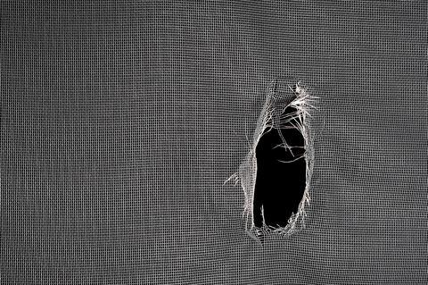 How to Repair a Window or Door Screen
