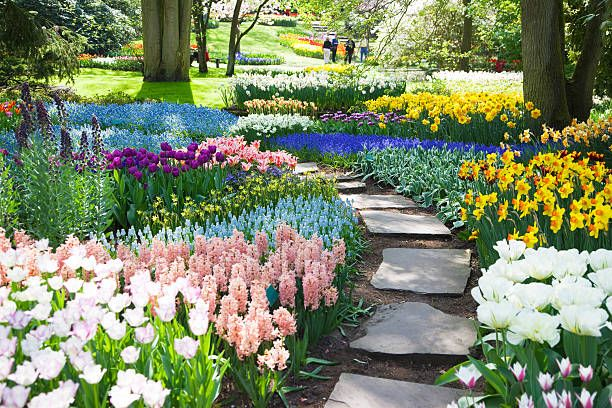 10 Best Bulbs To Plant In The Fall When