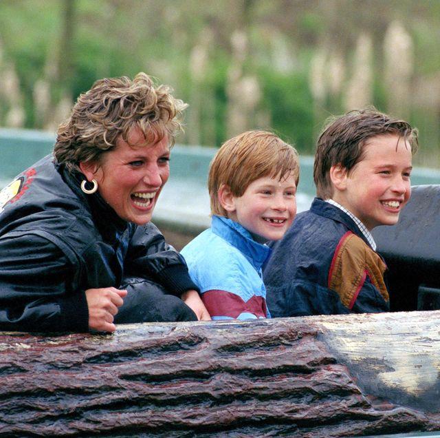 diana princess of wales, prince william  prince harry visit the thorpe park amusement park photo by julian parkeruk press via getty images