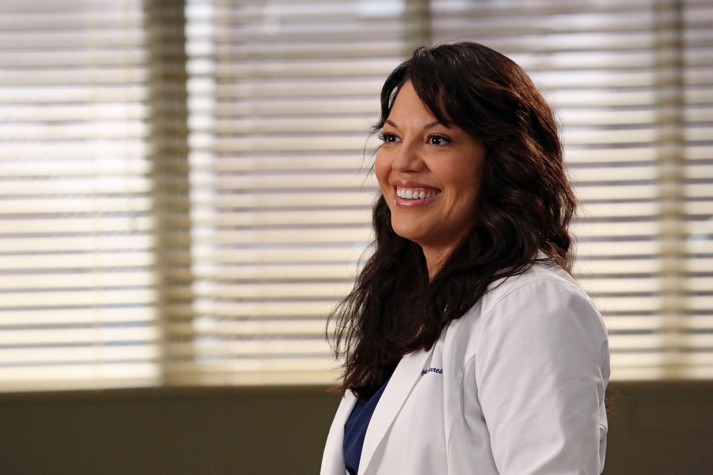 Sara Ramirez May Return to Grey's Anatomy As the Beloved Dr  Callie