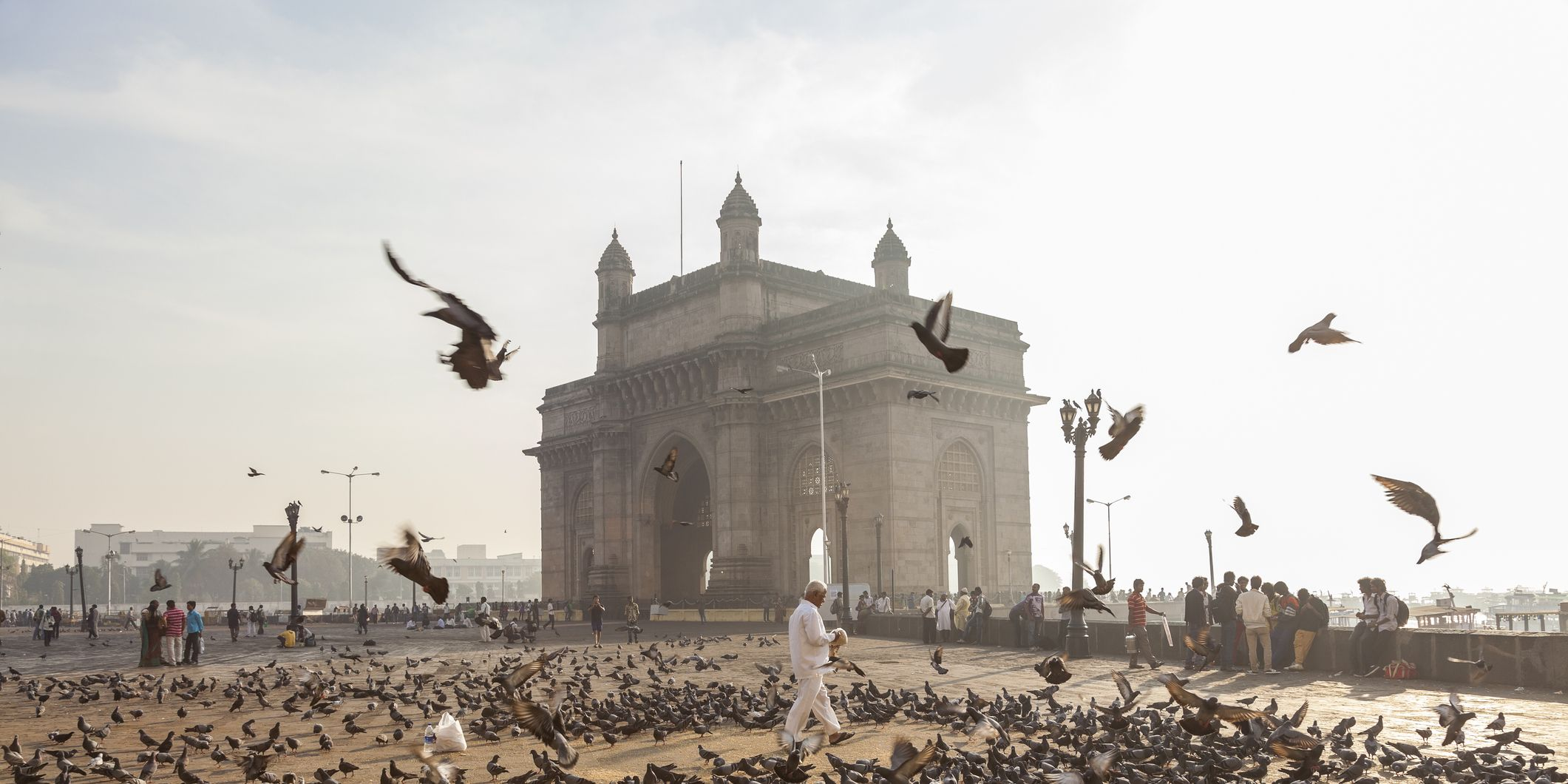 Pigeons, India Gate, Colaba, Mumbai, India