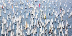 Sailing regatta Barcolana