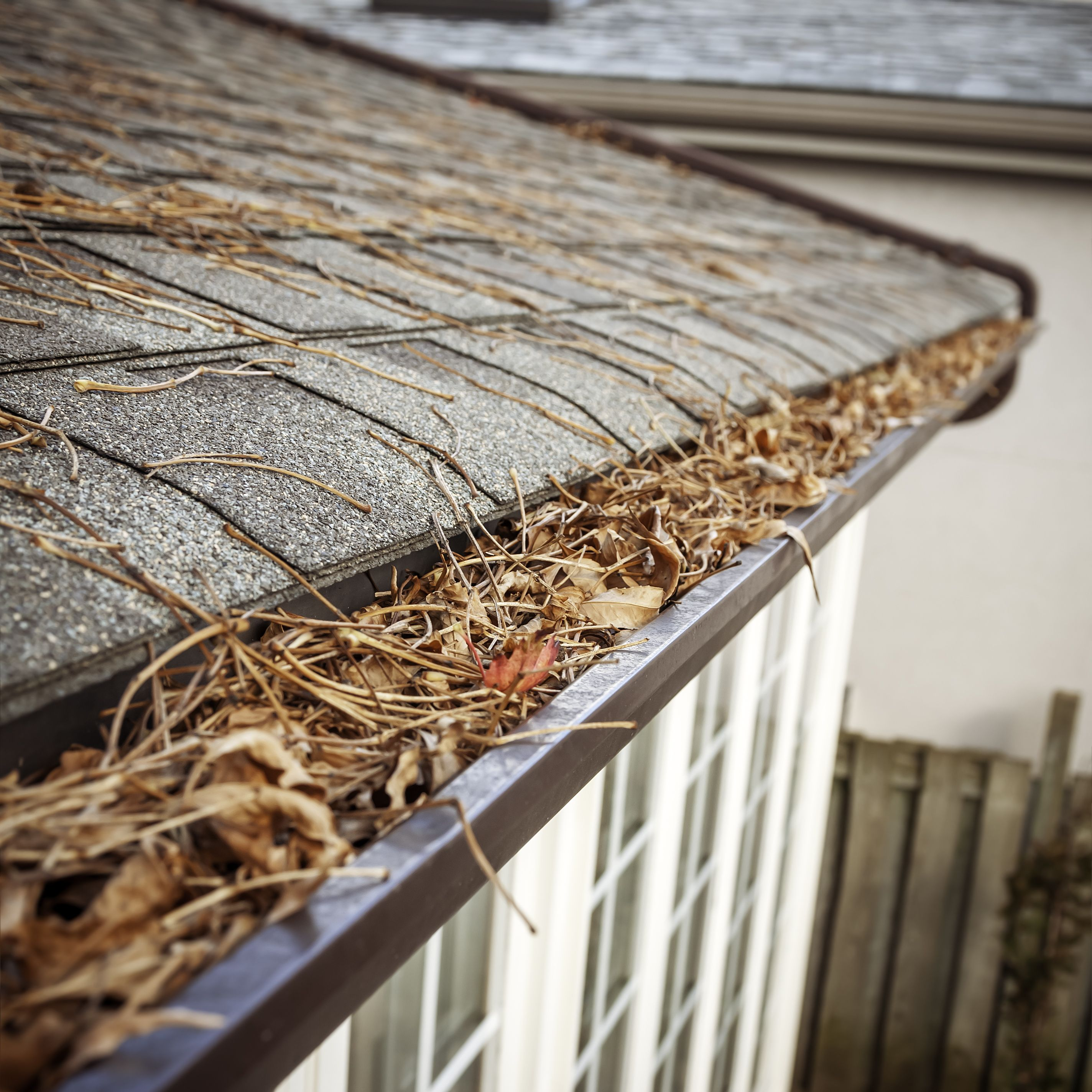 How to Repair Your Gutters and Save Your Home