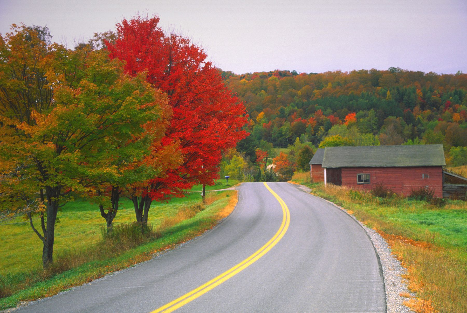 10 best places to see new england fall foliage 2018
