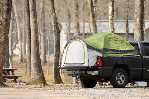 Car, Vehicle, Tree, State park, Woody plant, Pickup truck, Landscape, Plant, Automotive exterior, Tent,