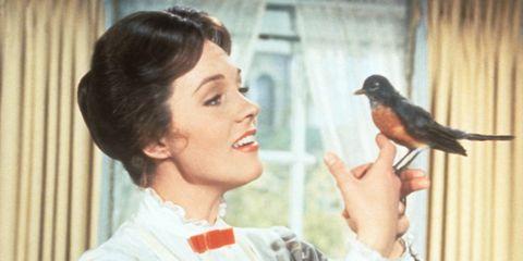 Bird, Beak, Organ, Neck, Wing, Eyelash, Black hair, Nail, Feather, Pet supply,