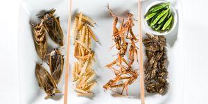 Insecten eten - De insectenpopulatie neemt af en dat heeft enorme gevolgen voor ons duurzame dieet