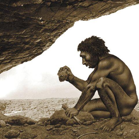 Homo antecessor, artwork