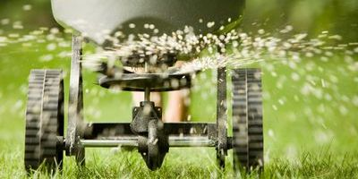 Getty Imagesbanksphotos The Best Time To Fertilize Your Lawn