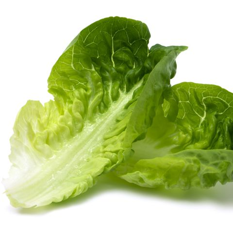 Leaf vegetable, Vegetable, Food, Iceburg lettuce, Lettuce, Leaf, Romaine lettuce, Savoy cabbage, Plant, Cruciferous vegetables,
