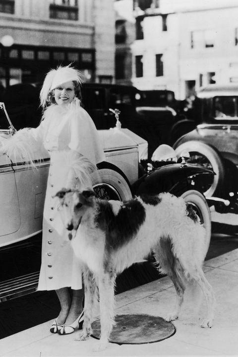 Motor vehicle, Classic, Dog, Vehicle, Canidae, Car, Snapshot, Vintage car, Black-and-white, Photography,