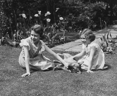 Royal Sisters & Dog
