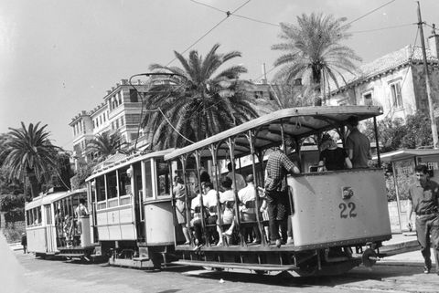 Transport, Mode of transport, Tram, Vehicle, Cable car, Motor vehicle, Public transport, Bus, Electricity, Tree,