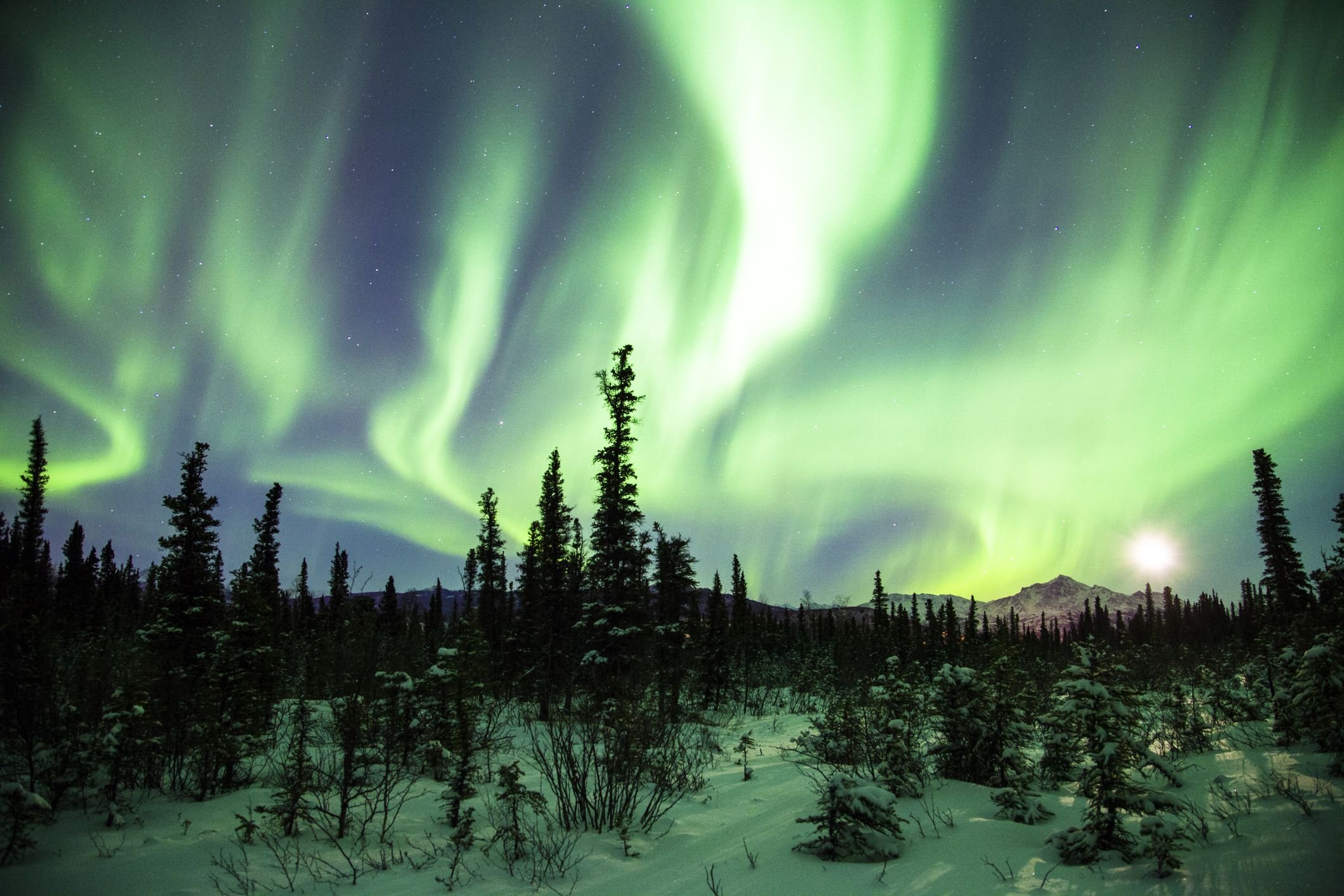The Northern Lights Will Be Visible Over Northern States in the U.S. Tonight
