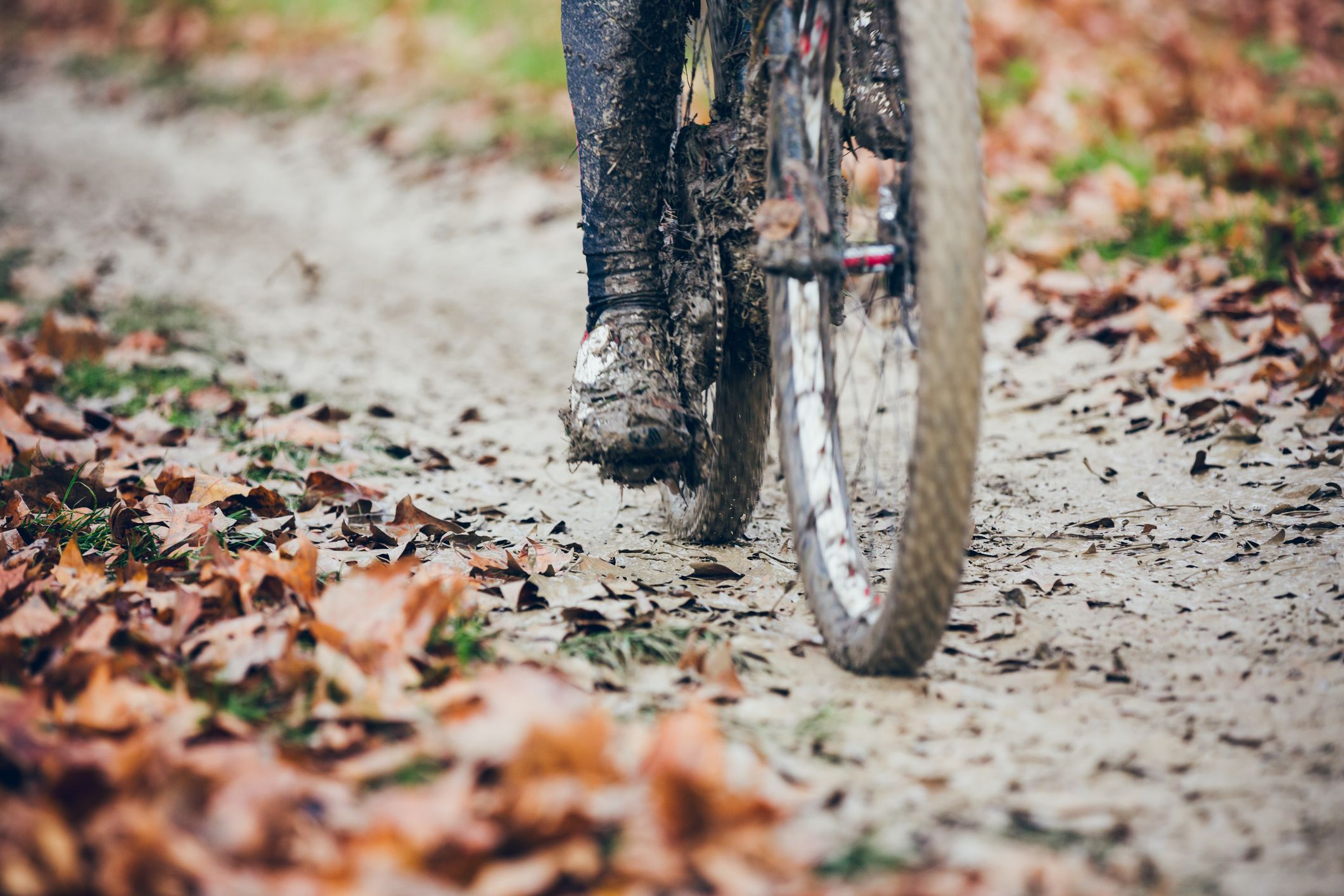 A Step-by-Step Guide on How to Clean a Bike