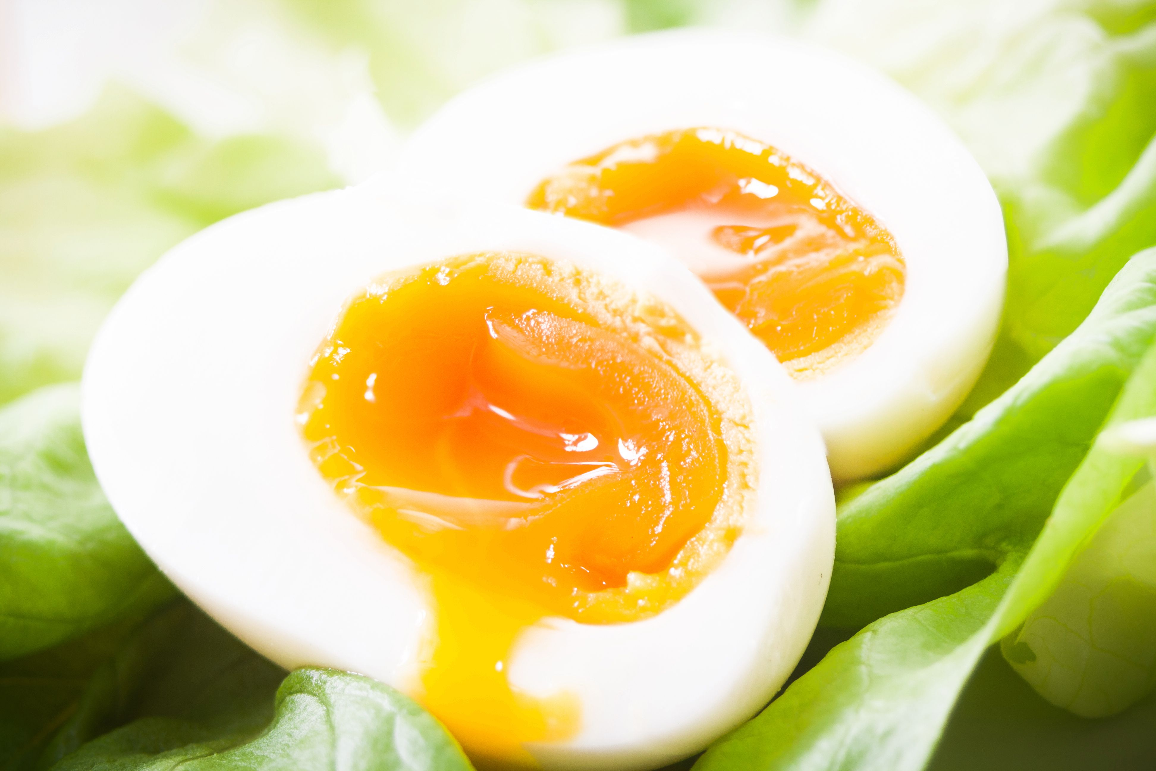 Can Runny Eggs Give You Salmonella? - Are Runny Egg Yolks Raw?