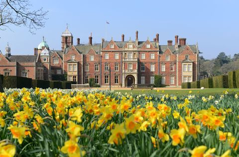 Flower, Château, Yellow, Natural landscape, Spring, Plant, Stately home, Estate, Castle, Building,