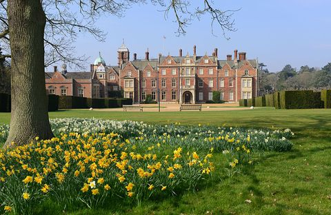 Estate, Spring, Natural landscape, Yellow, Stately home, Château, Grass, Flower, Plant, Mansion,