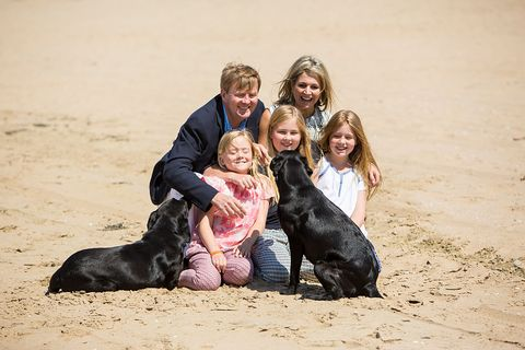 Photograph, People, Fun, Canidae, Friendship, Dog, Dog breed, Photography, Sporting Group, Sand,