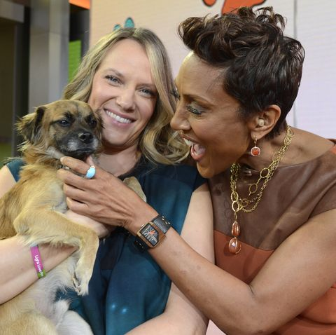 good morning america   puppy love the north shore animal league brought puppies who are up for adoption, to good morning america, 11315, airing on the walt disney television via getty images television network   photo by ida mae astutewalt disney television via getty images