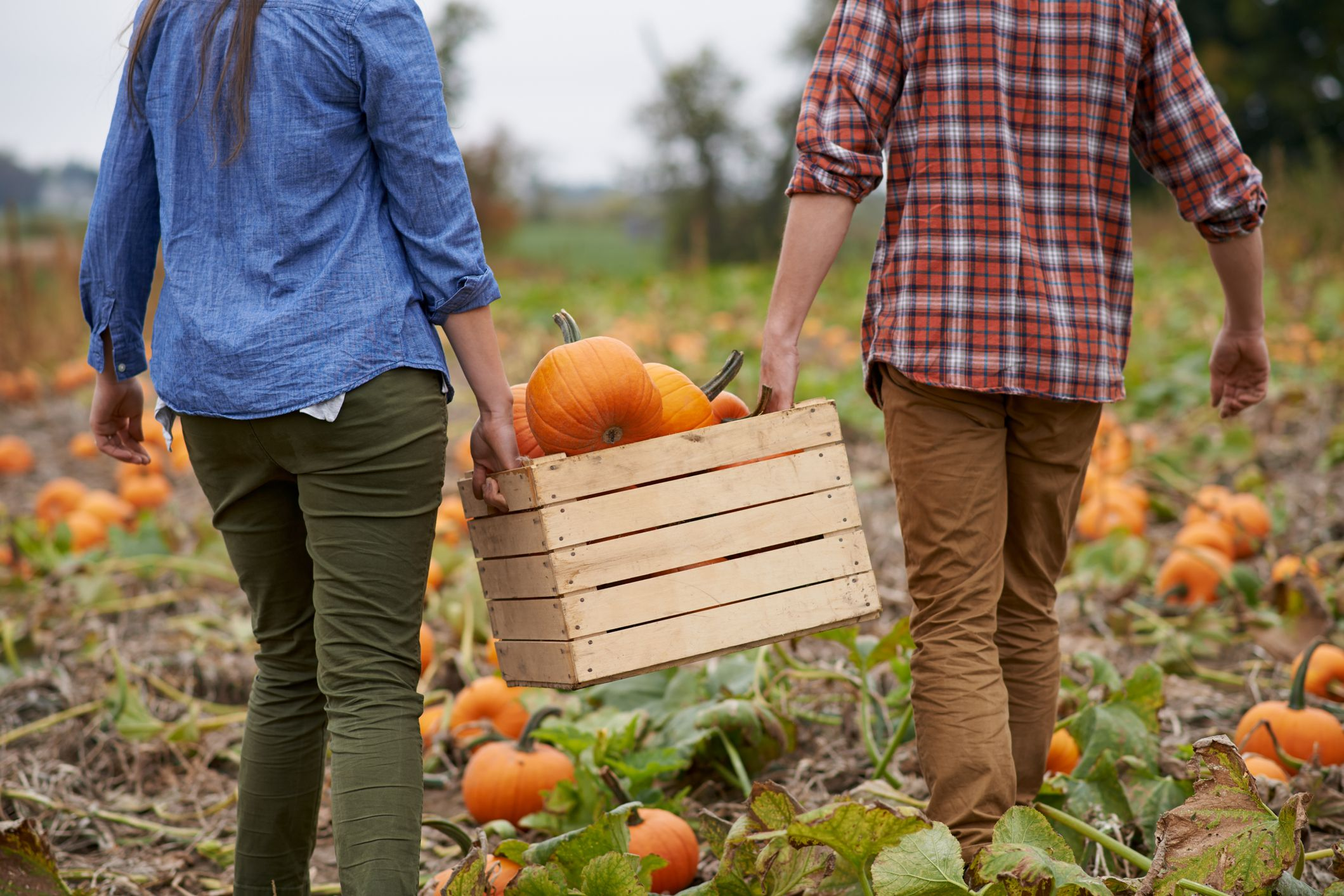 30 Romantic Fall Date Ideas That Go Beyond the Pumpkin Patch