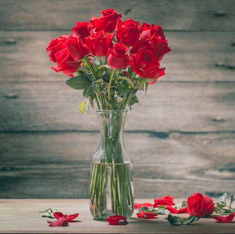 Roses for Valentine's Day