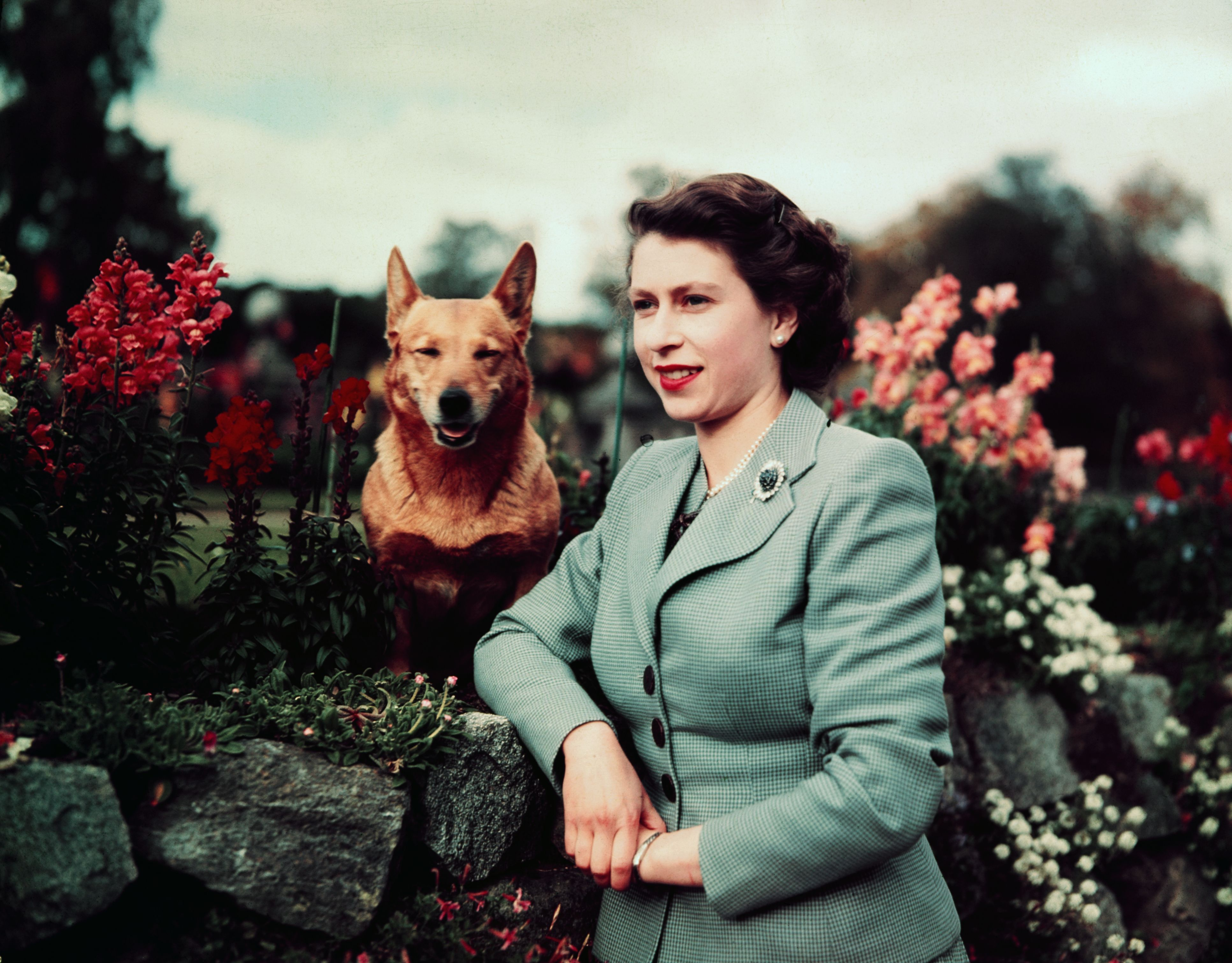 19 of the Best Books About Queen Elizabeth II