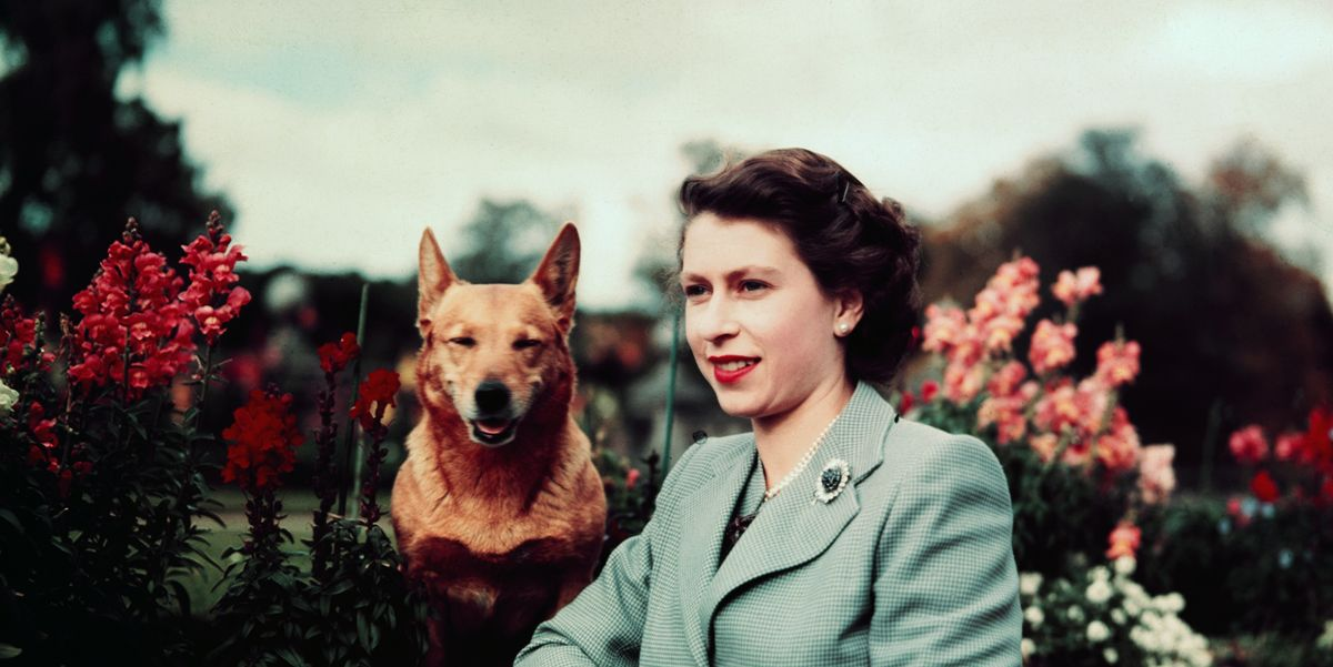 18 of the Best Books About Queen Elizabeth II - TownandCountrymag.com