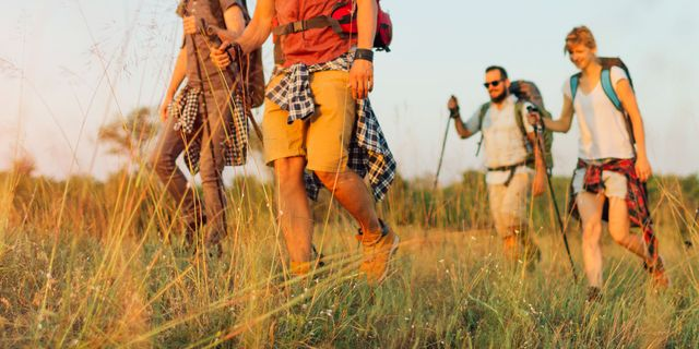 four male hikers in shorts walking through tall grass