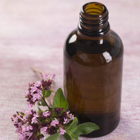 bodycare and healthcare  essential oil of oregano
