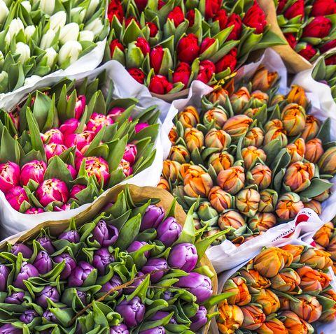 Natural foods, Flower, Plant, Local food, Flowering plant, Tulip, Spring, Fruit, Groundcover, Market,