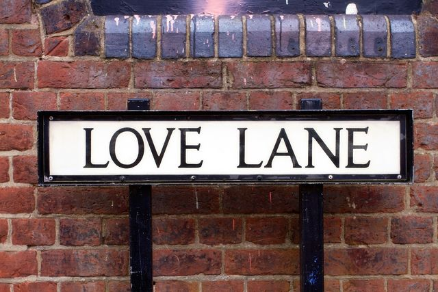 love lane street sign on a red brick wall
