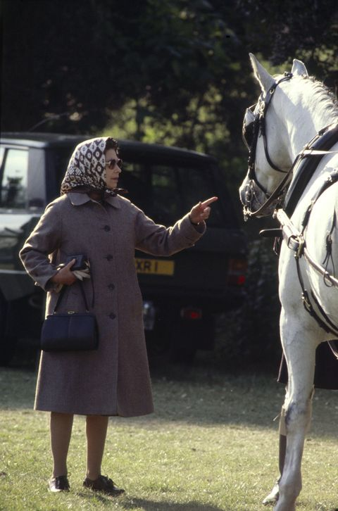Queen Points At Horse