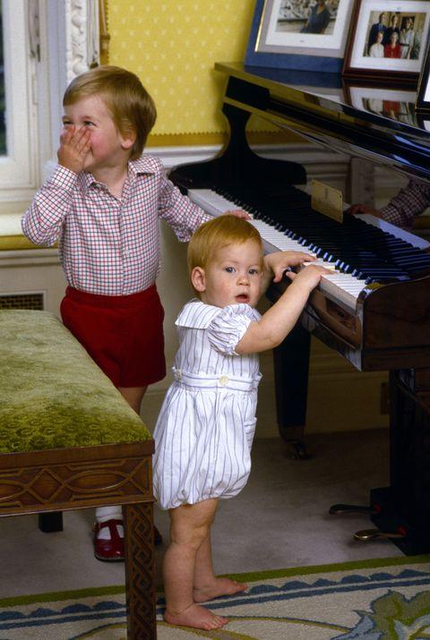 ダイアナ妃 ウィリアム王子 ハリー王子 子供 写真 ロイヤルキッズ