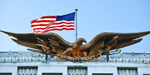 embassy bald eagle and flag