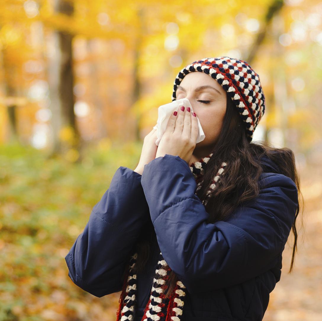 Allergie Plaid