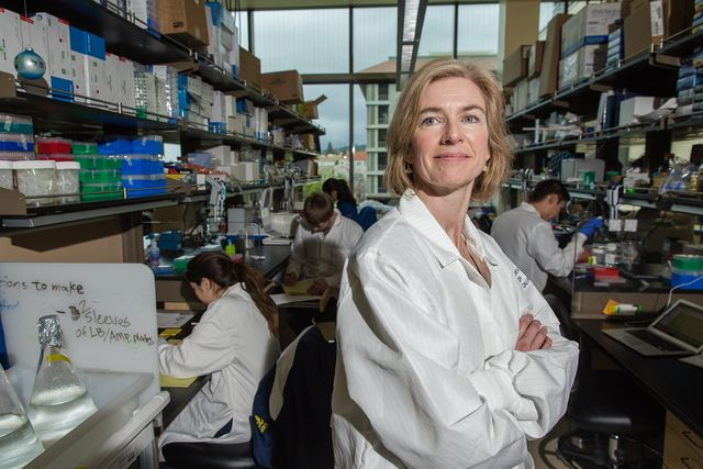 berkeley, ca   february, 19 jennifer doudna, inventor of the revolutionary gene editing tool crispr photographed in the li ka shing center on the campus of the university of california, berkeley nick otto for the washington post via getty images