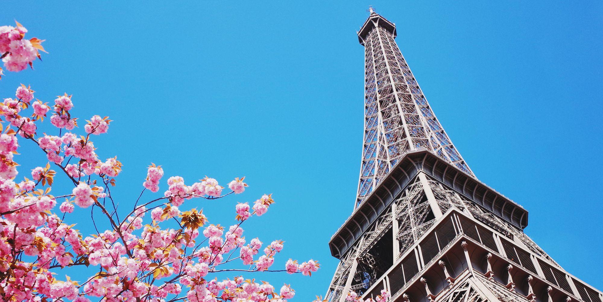 賞櫻,櫻花,景點,巴黎,紐約,溫哥華,粉紅,日本,韓國,櫻花季