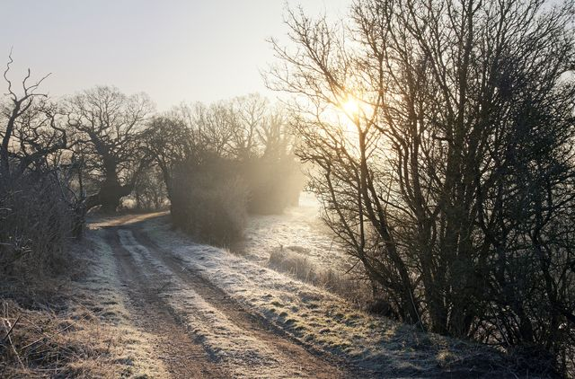 a country track on a frosty winters morning