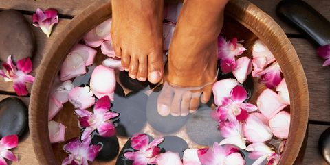 Petal, Pink, Flower, Nail, Foot, Leg, Plant, Finger, Hand, Herbaceous plant,
