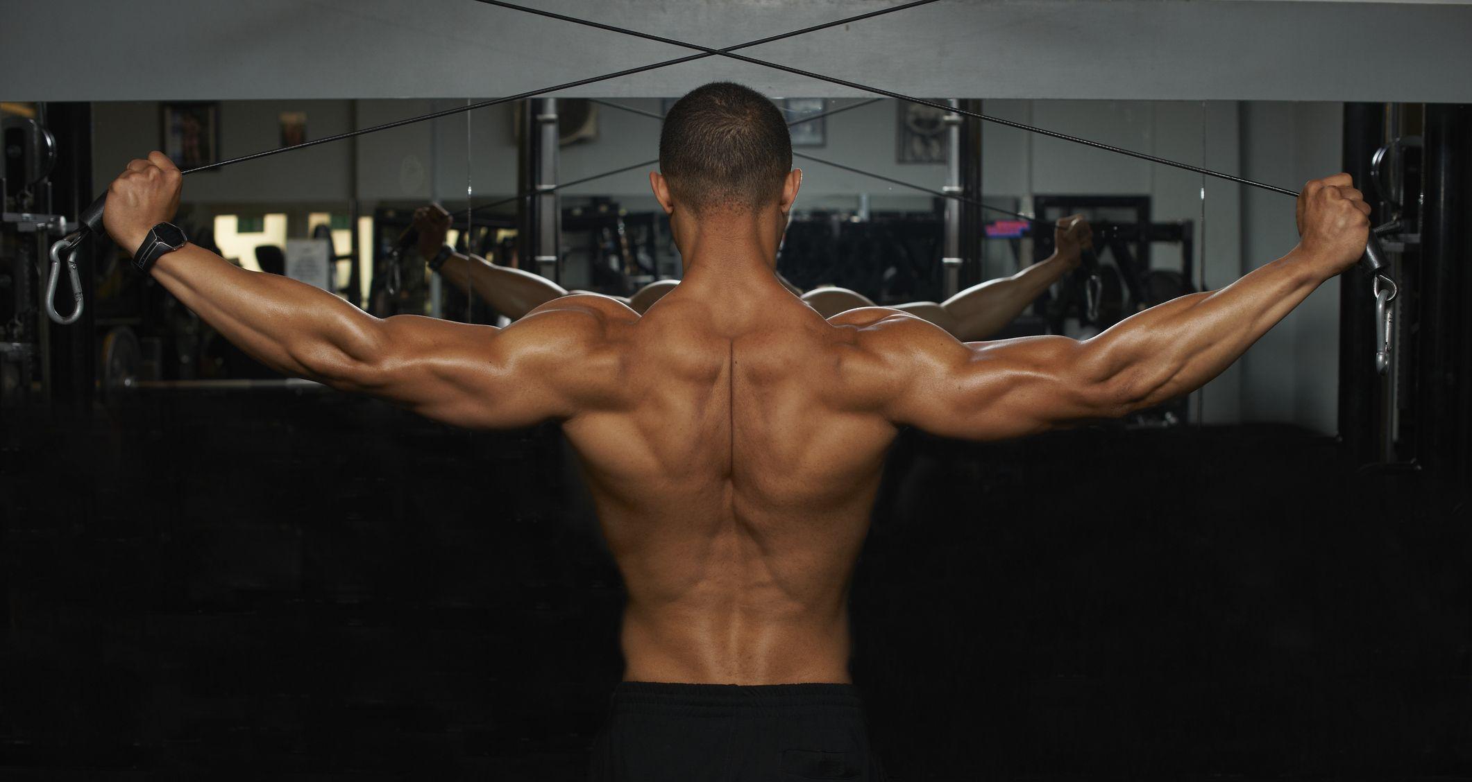 La guía definitiva de los mejores ejercicios para trabajar el dorsal