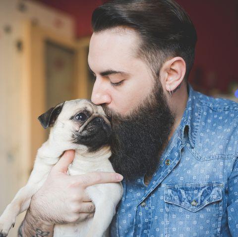 Dog, Canidae, Pug, Dog breed, Skin, Puppy love, Snout, Facial hair, Companion dog, Cheek,