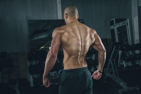 entrenamiento espalda