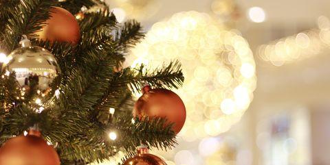 Christmas ornament, Christmas tree, Tree, Christmas decoration, Christmas, Branch, Christmas eve, Spruce, Fir, Woody plant,