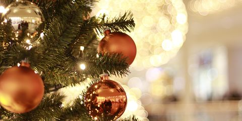 why your christmas tree could be making you ill